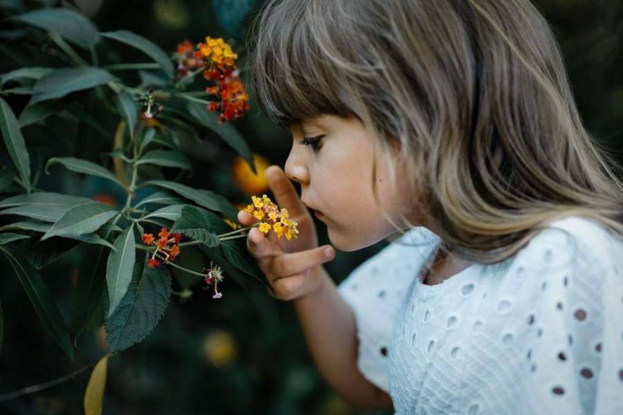 Children's shoot in Cattal NSW Australia